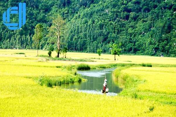 Tour Phú Yên từ Cần Thơ 3 ngày 2 đêm | Công ty du lịch D2tour